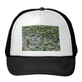 Lillypads On A Pond Trucker Hats
