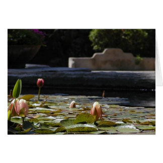 Lillypads Waterlily Card