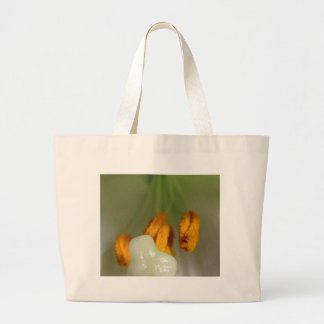Lillys Pistil And Anthers Bags