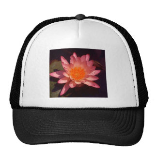 LILY256 MESH HATS