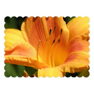 "lily-104.jpg 5"" x 7"" invitation card"
