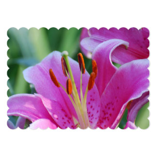 lily-166.jpg custom invites