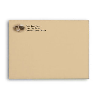 Lily #1 envelope