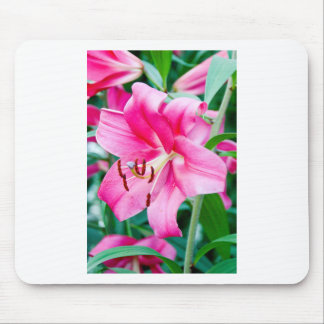 Lily 408 mouse pad