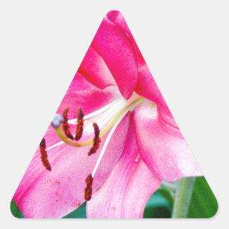 Lily 408 triangle sticker