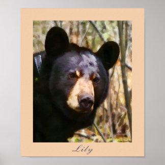 Lily, an American Black Bear Poster