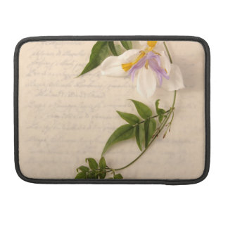 lily and vine on script Mac laptop sleeve