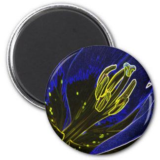 lily_art 2 inch round magnet