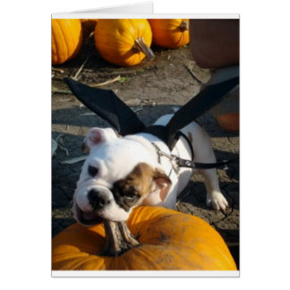 Lily at the Pumpkin Patch Greeting Card