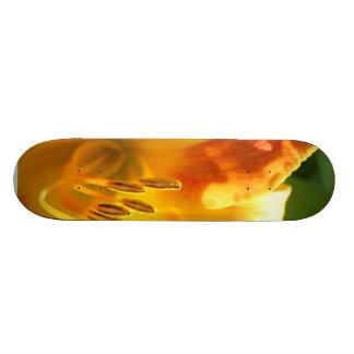 Lily board