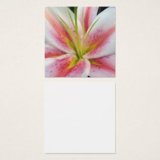 Lily Daylily macro flower photo Square Business Card