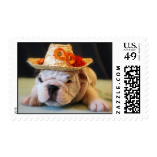 """""""Lily"""" English Bulldog Puppy Postage Stamps"""