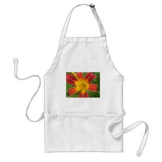 lily,fire color day lily adult apron