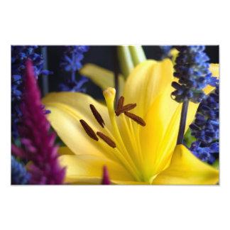 Lily Flower Arrangement Print Photo Print