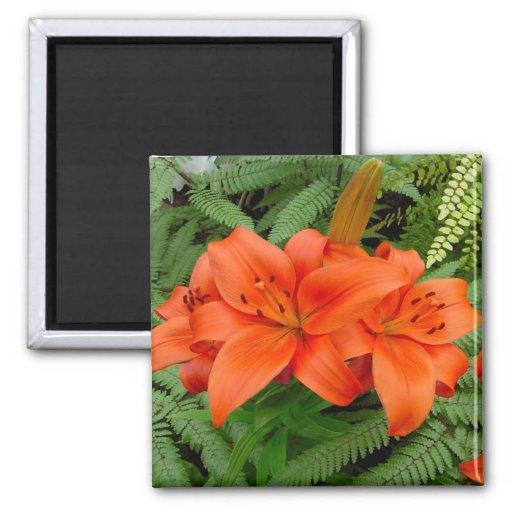 Lily flower - Iridescent orange (Matt 28-30) 2 Inch Square Magnet