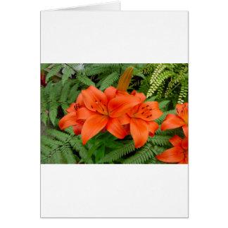 Lily flower - Iridescent orange (Matt 28-30) Greeting Card
