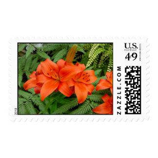 Lily flower - Iridescent orange (Matt 28-30) Postage Stamps