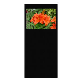 Lily flower - Iridescent orange (Matt 28-30) Rack Card
