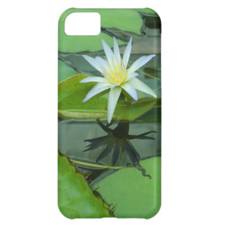 Lily Flower Lotus in Bloom Case For iPhone 5C