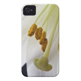 Lily Flower Macro iPhone 4 4s case