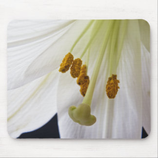 Lily Flower Macro mouse mat Mouse Pad