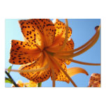 LILY FLOWERS Invitations Cards Lilies Parties