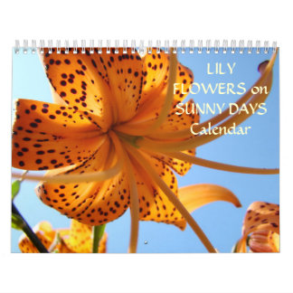 LILY FLOWERS on SUNNY DAYS! Gift Calendar New Year