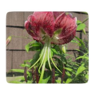 Lily Green Maroon Garden Flower
