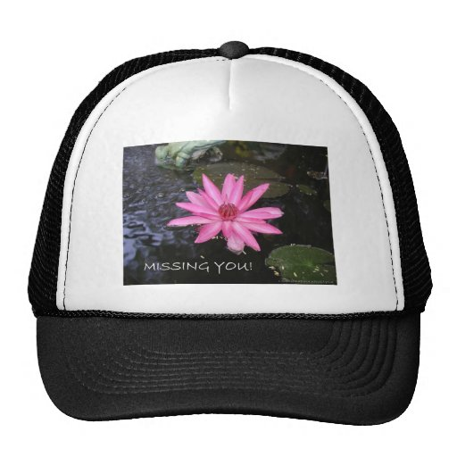 LILY GREETINGS 3 TRUCKER HAT