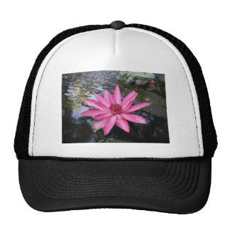 LILY GREETINGS 4 TRUCKER HAT