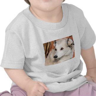 Lily - Husky Terrier Hybrid Photo-10 Tees