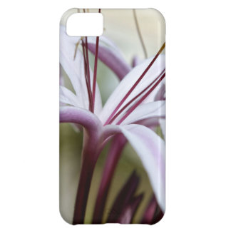 Lily iPhone 5C Case