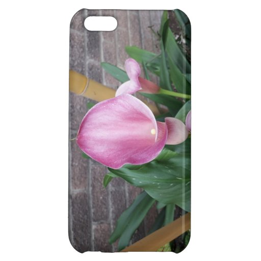 Lily Case For iPhone 5C