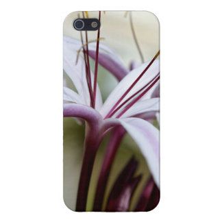 Lily iPhone SE/5/5s Cover