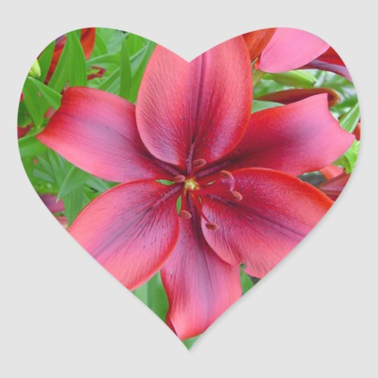 Lily - Iridescent Red (Luke 12:15) Heart Sticker