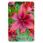 Lily - Iridescent Red (Luke 12:15) Flexible Magnets