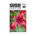 Lily - Iridescent Red (Luke 12:15) Stamps