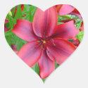 Lily - Iridescent Red (Luke 12:15) Stickers