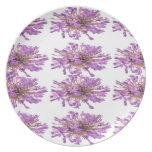 LILY LILLY Flower - Purple Violet Voilet Party Plate