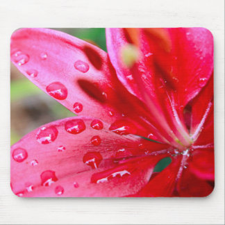 """Lily Looks Tiny"" Asian Pink/Red Lily Mousepad"