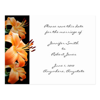 Lily Love Save the Date postcard