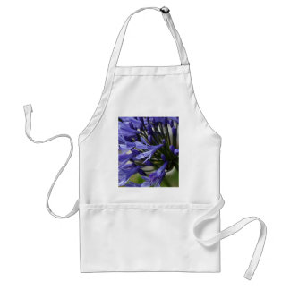 Lily of the Nile  (Agapanthus sp.) Adult Apron