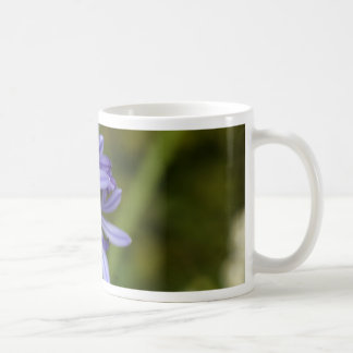 Lily of the Nile  (Agapanthus sp.) Coffee Mug