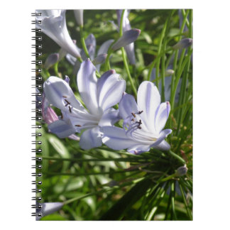 Lily of the Nile Notebook