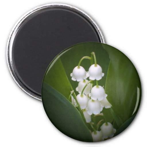 Lily-Of-The_Valley 2 Inch Round Magnet