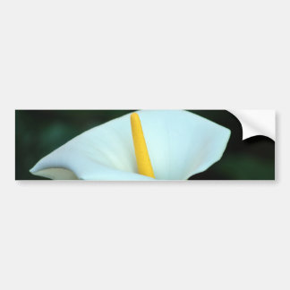Lily of the valley bumper sticker