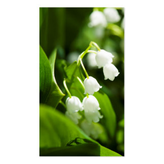 Lily of the valley flower business card