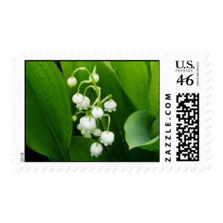Lily of the Valley Flower postage stamp