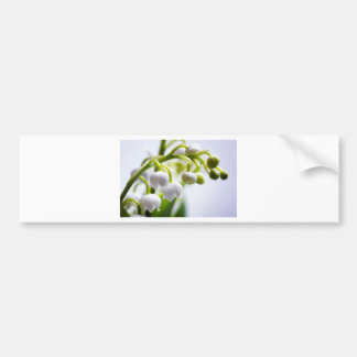 Lily of the Valley Flowers Bumper Sticker