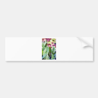 Lily of the Valley Flowers Hidden in the Leaves Bumper Sticker
